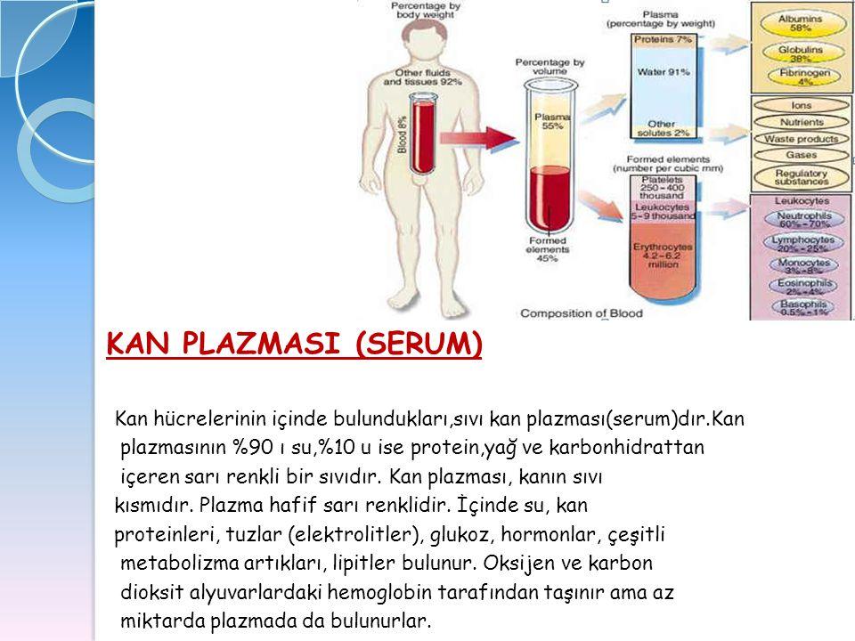 KAN PLAZMASI (SERUM) Kan hücrelerinin içinde bulundukları,sıvı kan plazması(serum)dır.Kan plazmasının %90 ı su,%10 u ise protein,yağ ve karbonhidratta