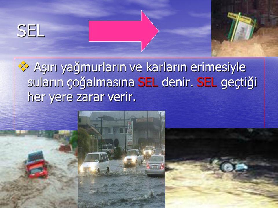 DOĞAL AFETLER SEL  Aşırı yağmurların ve karların erimesiyle suların çoğalmasına SEL denir. SEL geçtiği her yere zarar verir.