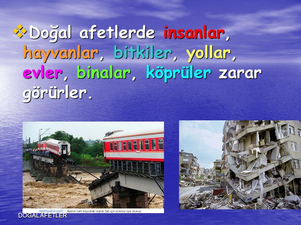 DOĞAL AFETLER  Doğal afetlerde insanlar, hayvanlar, bitkiler, yollar, evler, binalar, köprüler zarar görürler.