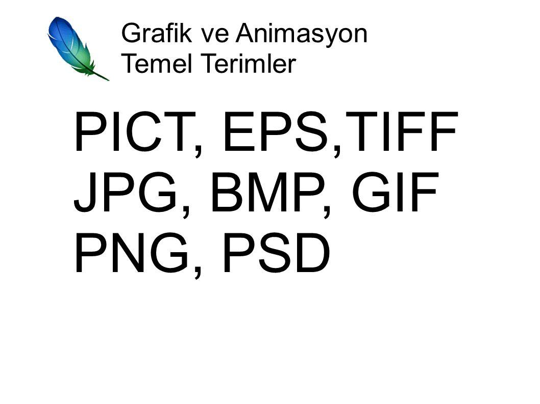 Grafik ve Animasyon Temel Terimler PICT, EPS,TIFF JPG, BMP, GIF PNG, PSD