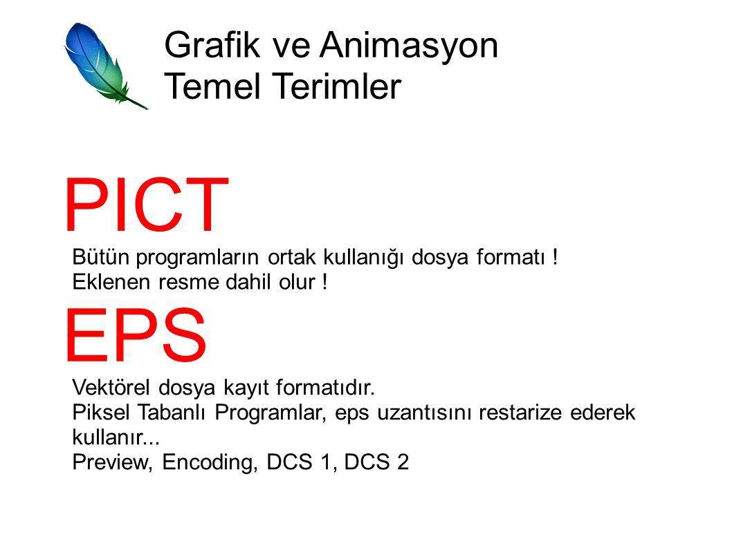 Grafik ve Animasyon Temel Terimler PICT Bütün programların ortak kullanığı dosya formatı .