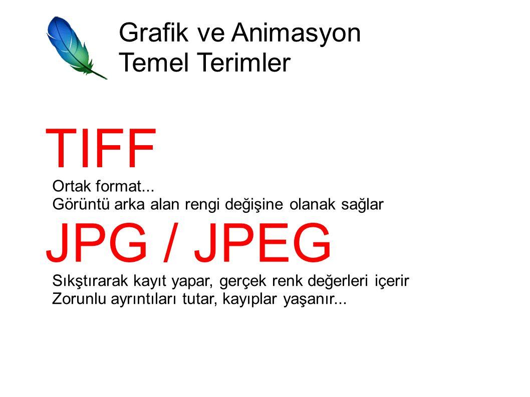 Grafik ve Animasyon Temel Terimler TIFF Ortak format...