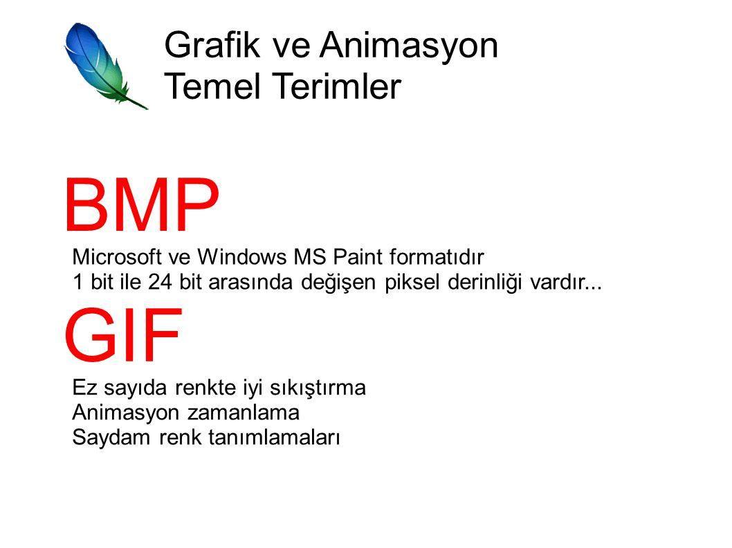Grafik ve Animasyon Temel Terimler BMP Microsoft ve Windows MS Paint formatıdır 1 bit ile 24 bit arasında değişen piksel derinliği vardır...