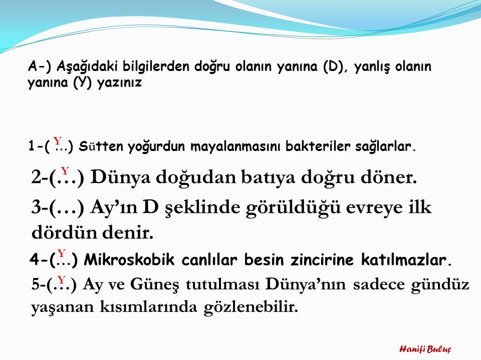 A-) Aşağıdaki bilgilerden doğru olanın yanına (D), yanlış olanın yanına (Y) yazınız 1-( … ) S ü tten yoğurdun mayalanmasını bakteriler sağlarlar. 2-(…