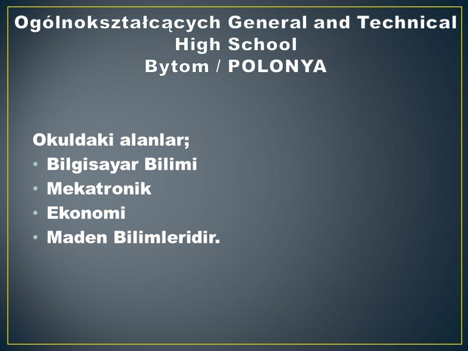 Okuldaki alanlar; Bilgisayar Bilimi Mekatronik Ekonomi Maden Bilimleridir.