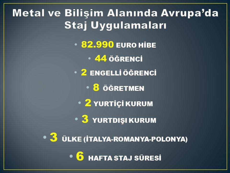 82.990 EURO HİBE 44 ÖĞRENCİ 2 ENGELLİ ÖĞRENCİ 8 ÖĞRETMEN 2 YURTİÇİ KURUM 3 YURTDIŞI KURUM 3 ÜLKE (İTALYA-ROMANYA-POLONYA) 6 HAFTA STAJ SÜRESİ