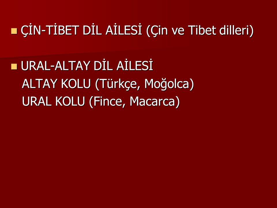 ÇİN-TİBET DİL AİLESİ (Çin ve Tibet dilleri) ÇİN-TİBET DİL AİLESİ (Çin ve Tibet dilleri) URAL-ALTAY DİL AİLESİ URAL-ALTAY DİL AİLESİ ALTAY KOLU (Türkçe