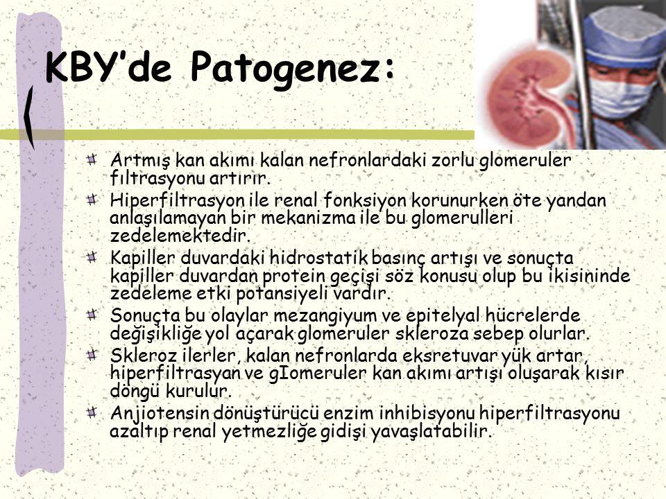 KBY'de Patogenez: Deneysel modellerde yüksek proteinli diyetin, renal yetersizliği hızlandırdığı ve bunun muhtemelen afferent arterioler dilatasyona ve hiperfiltrasyona bağlı olabileceği öne sürülmüştür.