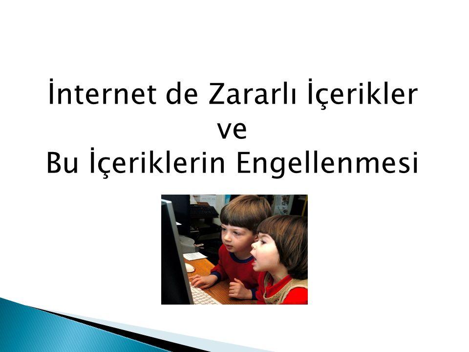 İnternet de Zararlı İçerikler ve Bu İçeriklerin Engellenmesi