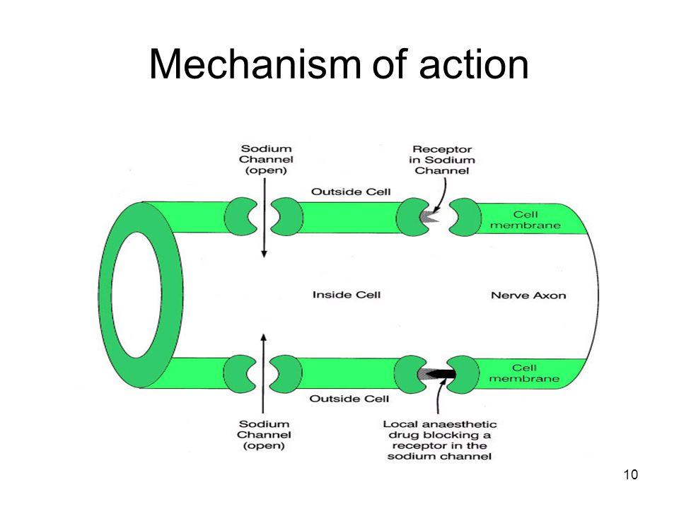 10 Mechanism of action