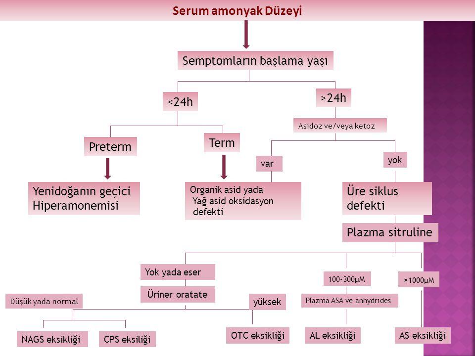 Serum amonyak Düzeyi Semptomların başlama yaşı Preterm <24h Term >24h Yenidoğanın geçici Hiperamonemisi Asidoz ve/veya ketoz Organik asid yada Yağ asi