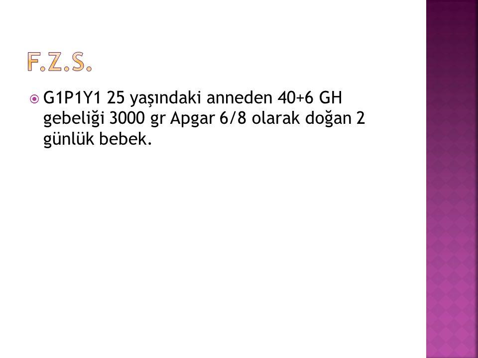  G1P1Y1 25 yaşındaki anneden 40+6 GH gebeliği 3000 gr Apgar 6/8 olarak doğan 2 günlük bebek.