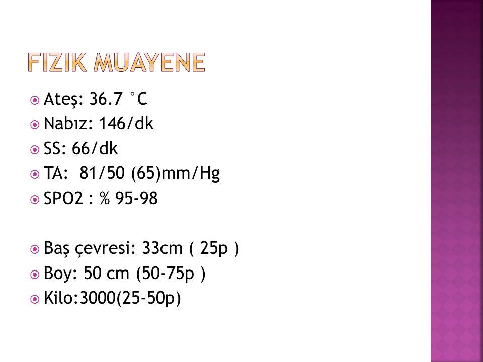  Ateş: 36.7 °C  Nabız: 146/dk  SS: 66/dk  TA: 81/50 (65)mm/Hg  SPO2 : % 95-98  Baş çevresi: 33cm ( 25p )  Boy: 50 cm (50-75p )  Kilo:3000(25-5