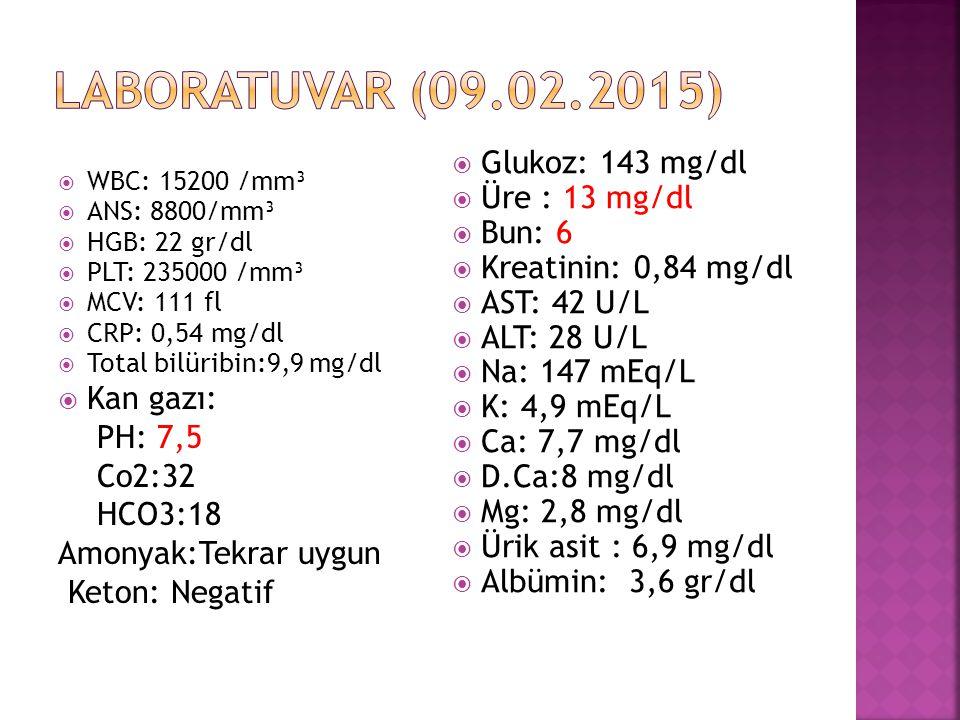  WBC: 15200 /mm³  ANS: 8800/mm³  HGB: 22 gr/dl  PLT: 235000 /mm³  MCV: 111 fl  CRP: 0,54 mg/dl  Total bilüribin:9,9 mg/dl  Kan gazı: PH: 7,5 C