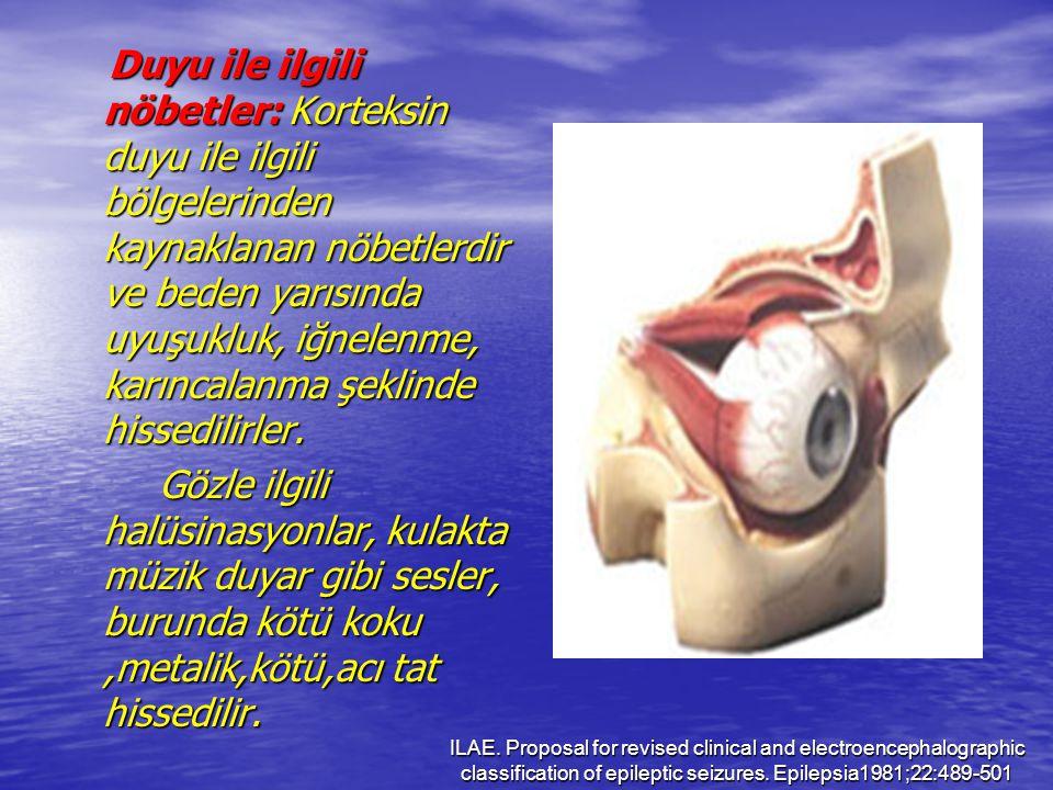 Duyu ile ilgili nöbetler: Korteksin duyu ile ilgili bölgelerinden kaynaklanan nöbetlerdir ve beden yarısında uyuşukluk, iğnelenme, karıncalanma şeklin