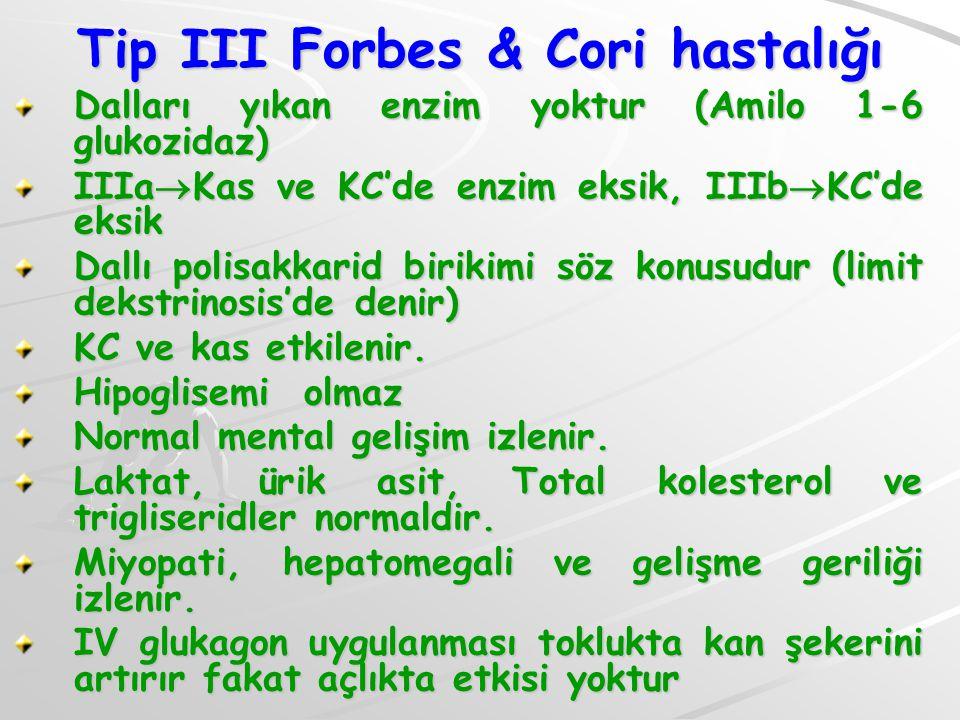Tip III Forbes & Cori hastalığı Dalları yıkan enzim yoktur (Amilo 1-6 glukozidaz) IIIa  Kas ve KC'de enzim eksik, IIIb  KC'de eksik Dallı polisakkar