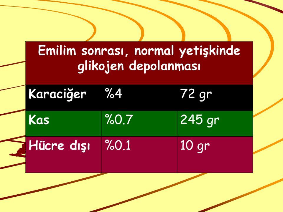 Emilim sonrası, normal yetişkinde glikojen depolanması Karaciğer%472 gr Kas%0.7245 gr Hücre dışı%0.110 gr