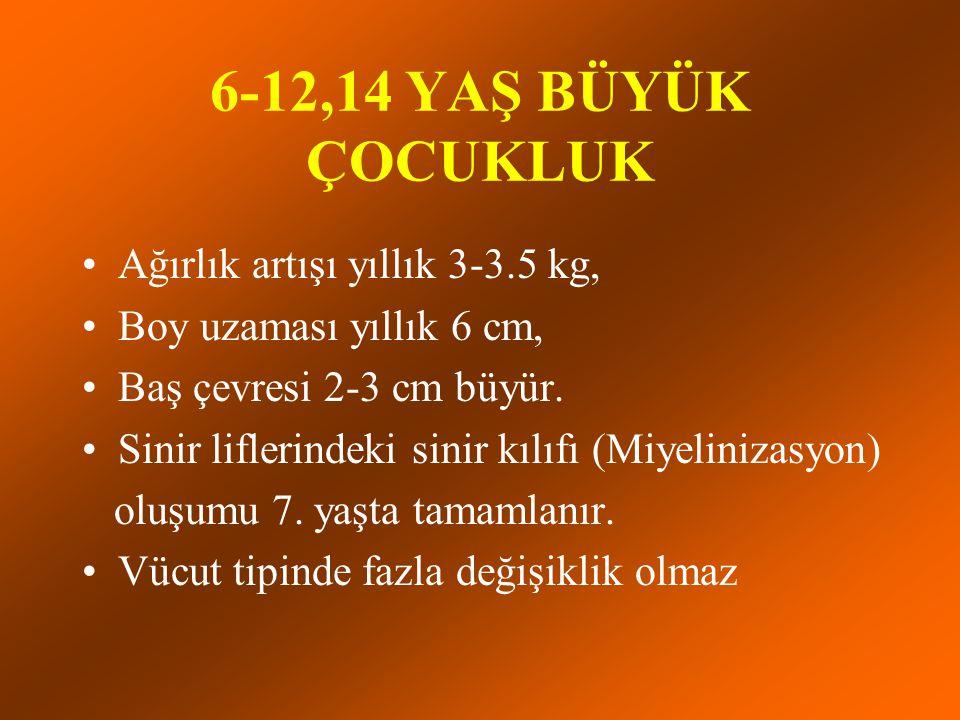 6-12,14 YAŞ BÜYÜK ÇOCUKLUK Ağırlık artışı yıllık 3-3.5 kg, Boy uzaması yıllık 6 cm, Baş çevresi 2-3 cm büyür. Sinir liflerindeki sinir kılıfı (Miyelin