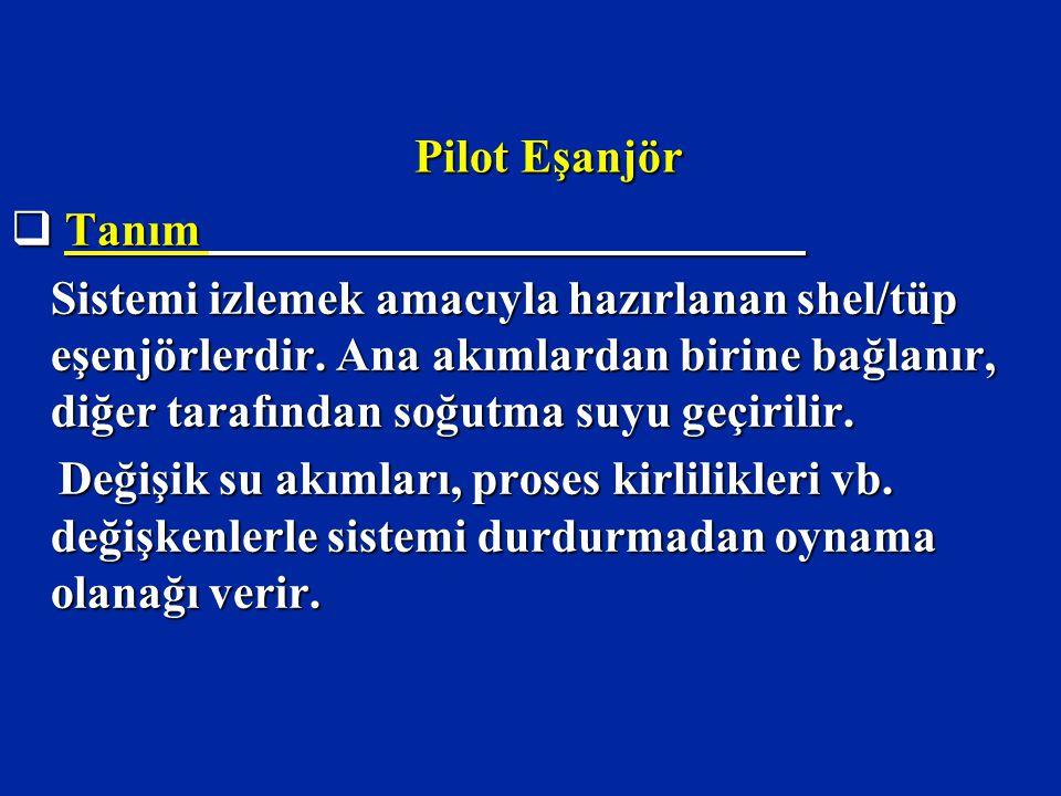 Pilot Eşanjör  Tanım Sistemi izlemek amacıyla hazırlanan shel/tüp eşenjörlerdir.