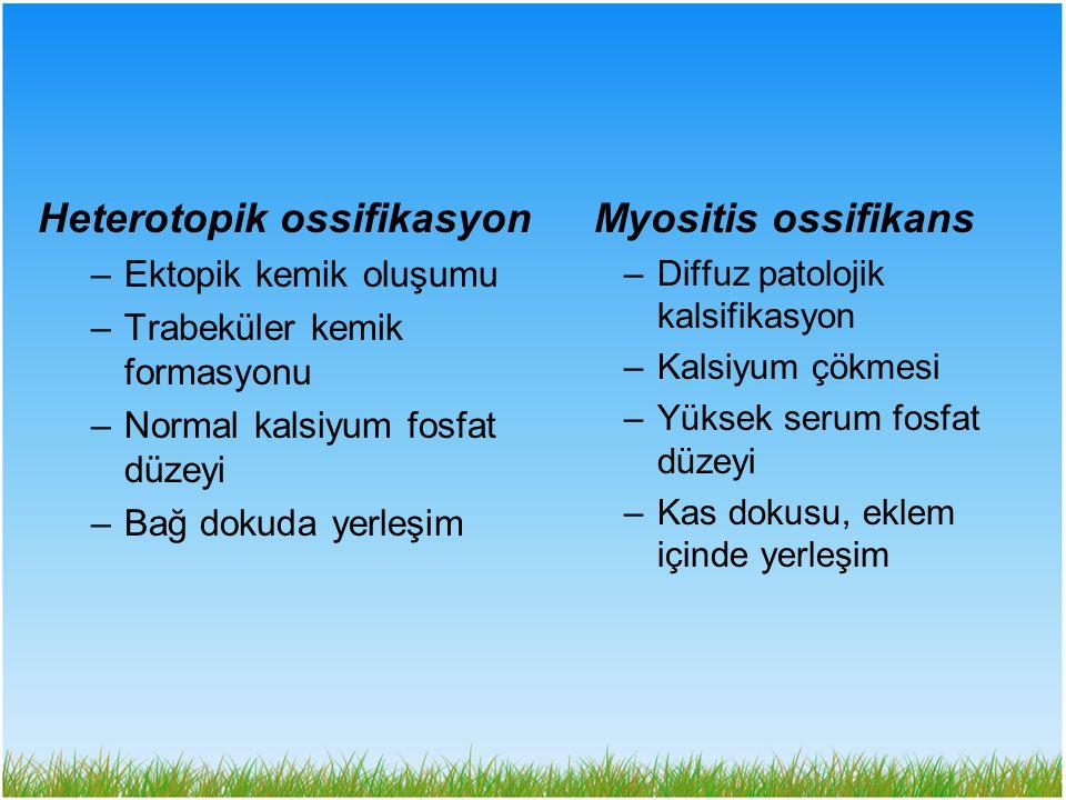 –Ektopik kemik oluşumu –Trabeküler kemik formasyonu –Normal kalsiyum fosfat düzeyi –Bağ dokuda yerleşim Myositis ossifikans –Diffuz patolojik kalsifik