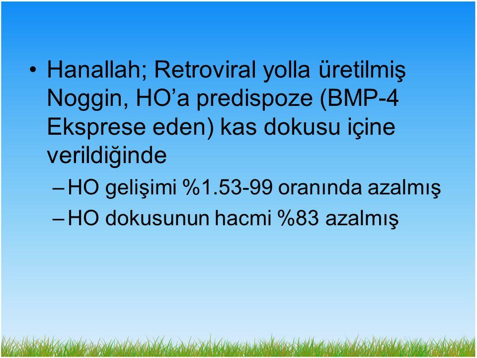 Hanallah; Retroviral yolla üretilmiş Noggin, HO'a predispoze (BMP-4 Eksprese eden) kas dokusu içine verildiğinde –HO gelişimi %1.53-99 oranında azalmı