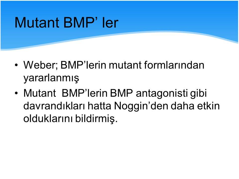 Mutant BMP' ler Weber; BMP'lerin mutant formlarından yararlanmış Mutant BMP'lerin BMP antagonisti gibi davrandıkları hatta Noggin'den daha etkin olduk