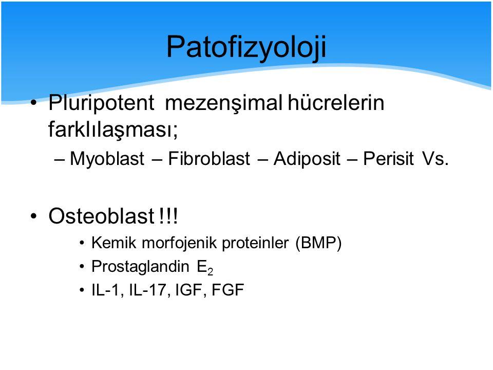 Patofizyoloji Pluripotent mezenşimal hücrelerin farklılaşması; –Myoblast – Fibroblast – Adiposit – Perisit Vs. Osteoblast !!! Kemik morfojenik protein