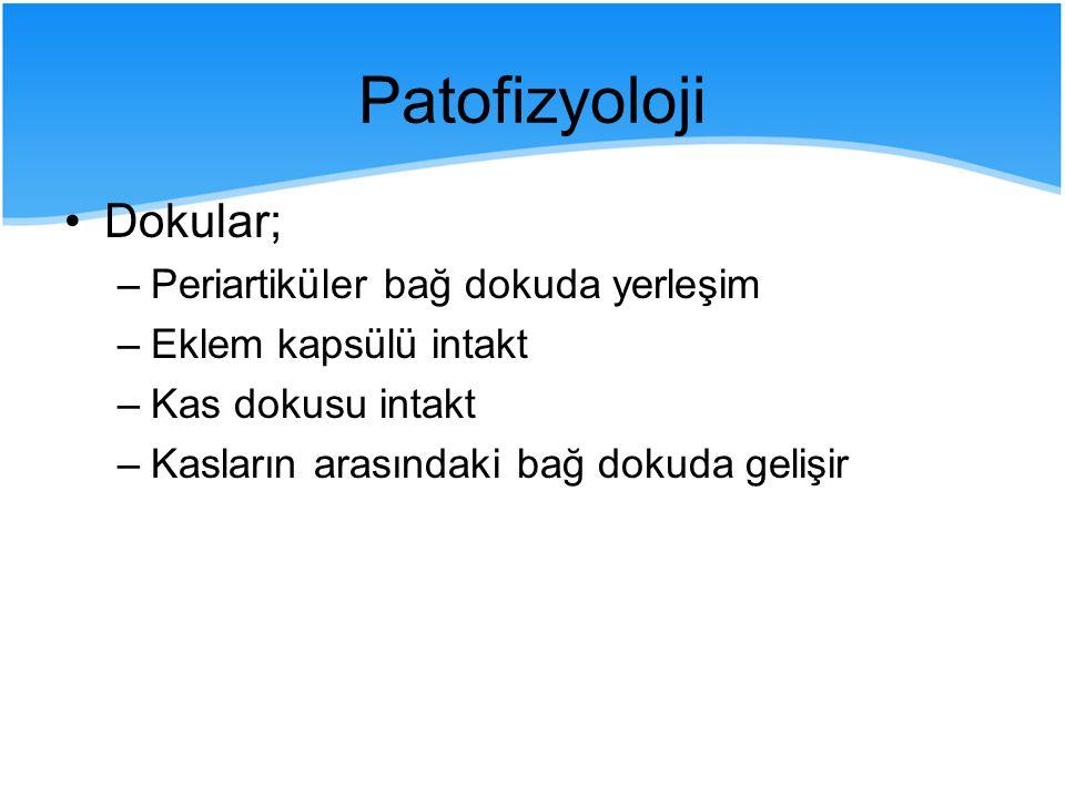 Histoloji