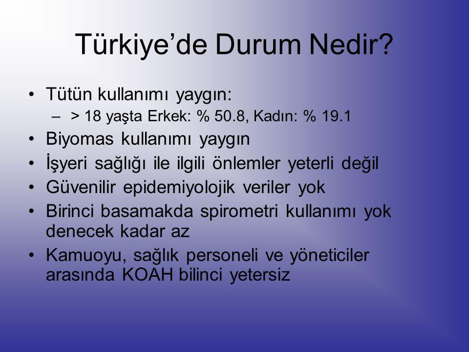 Türkiye'de Durum Nedir? Tütün kullanımı yaygın: – > 18 yaşta Erkek: % 50.8, Kadın: % 19.1 Biyomas kullanımı yaygın İşyeri sağlığı ile ilgili önlemler