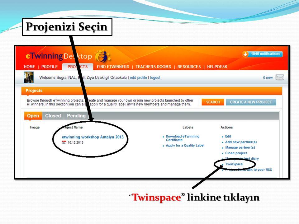 Twinspace'in Adını Burada Görebilirsiniz Twinspace için genel erişim linki Burayı kullanarak profilinizi düzenleyebilir ve sistemden çıkış yapabilirsiniz.