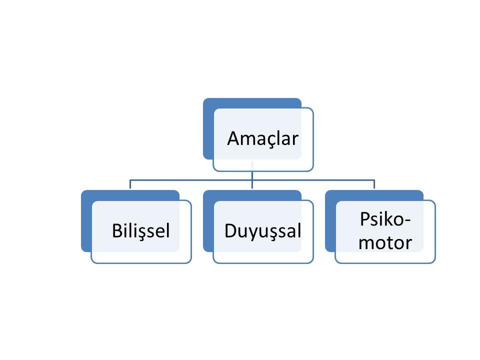 4.ARAŞTIRMA BECERİSİ