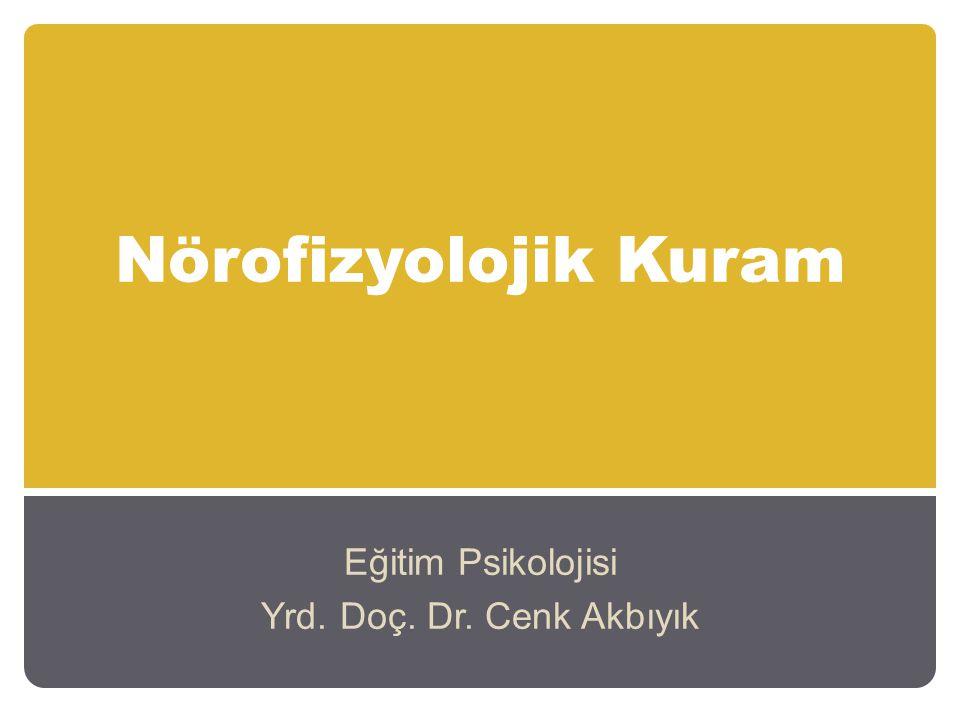Nörofizyolojik Kuram Eğitim Psikolojisi Yrd. Doç. Dr. Cenk Akbıyık
