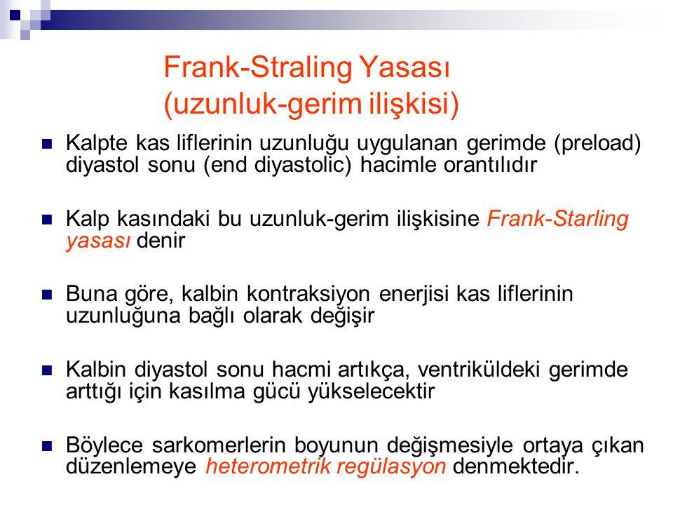 Frank-Straling Yasası (uzunluk-gerim ilişkisi) Kalpte kas liflerinin uzunluğu uygulanan gerimde (preload) diyastol sonu (end diyastolic) hacimle orant
