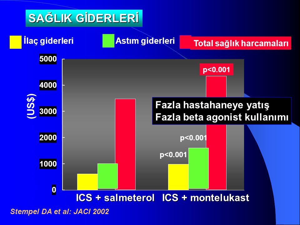 0 1000 2000 3000 4000 5000 Adjusted annual (US$) ICS + salmeterol ICS + montelukast İlaç giderleri Stempel DA et al: JACI 2002 p<0.001 Total sağlık ha