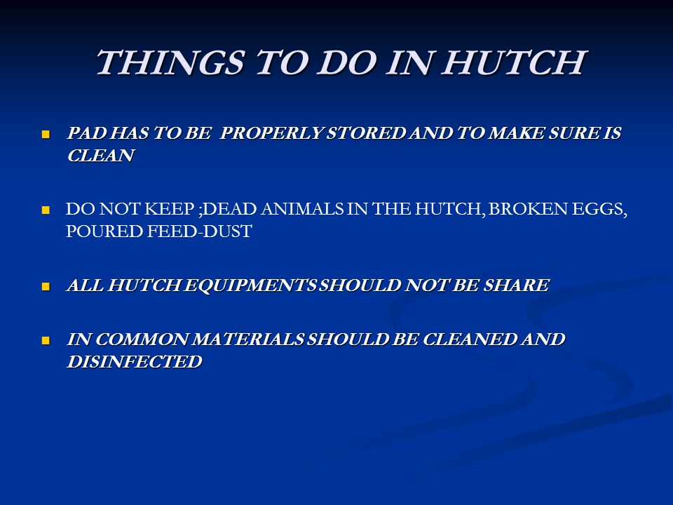 THINGS TO DO IN HUTCH PAD HAS TO BE PROPERLY STORED AND TO MAKE SURE IS CLEAN PAD HAS TO BE PROPERLY STORED AND TO MAKE SURE IS CLEAN DO NOT KEEP ;DEAD ANIMALS IN THE HUTCH, BROKEN EGGS, POURED FEED-DUST ALL HUTCH EQUIPMENTS SHOULD NOT BE SHARE ALL HUTCH EQUIPMENTS SHOULD NOT BE SHARE IN COMMON MATERIALS SHOULD BE CLEANED AND DISINFECTED IN COMMON MATERIALS SHOULD BE CLEANED AND DISINFECTED