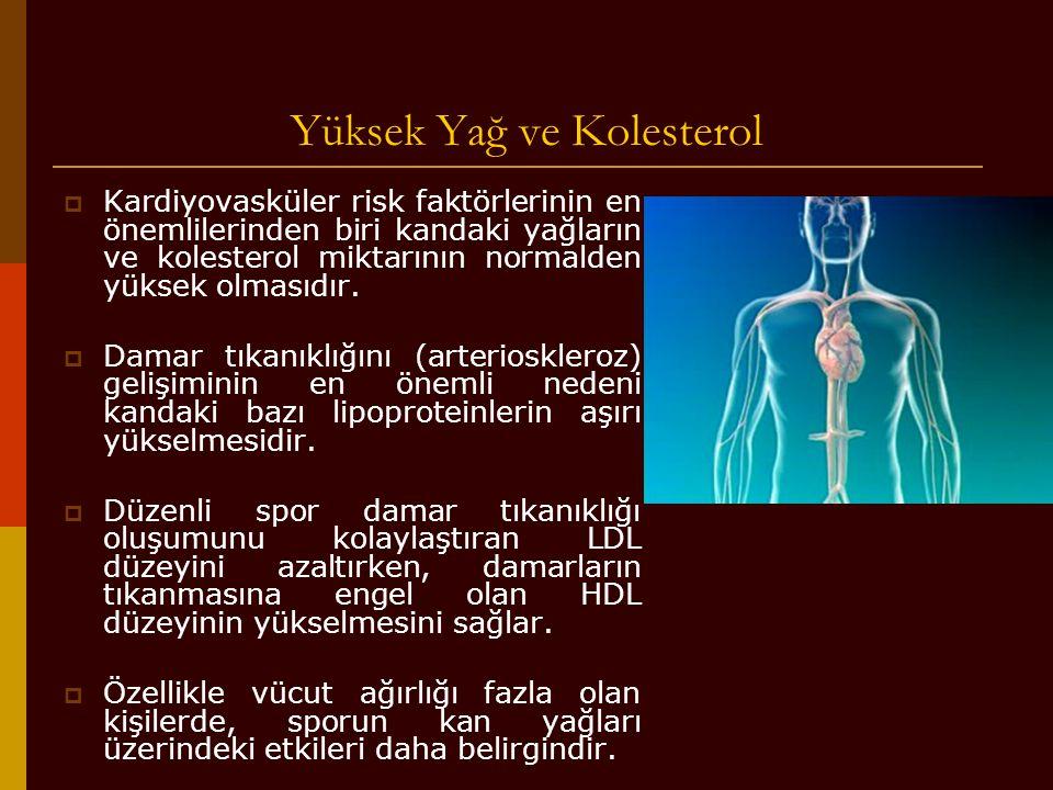 Yüksek Yağ ve Kolesterol  Kardiyovasküler risk faktörlerinin en önemlilerinden biri kandaki yağların ve kolesterol miktarının normalden yüksek olması