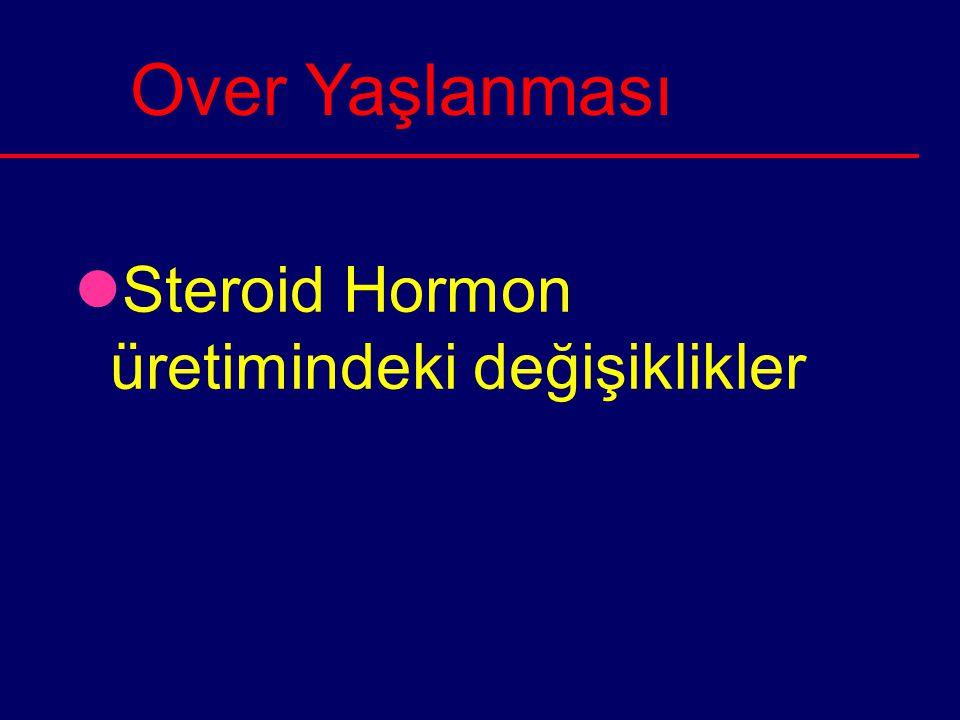 Over Yaşlanması Steroid Hormon üretimindeki değişiklikler