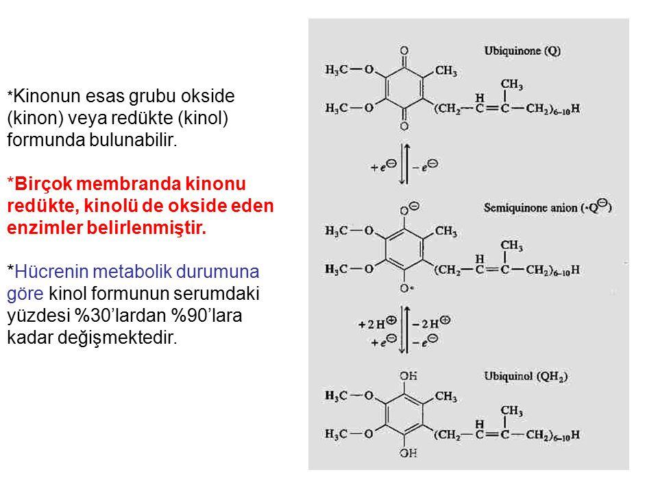 * Kinonun esas grubu okside (kinon) veya redükte (kinol) formunda bulunabilir. *Birçok membranda kinonu redükte, kinolü de okside eden enzimler belirl