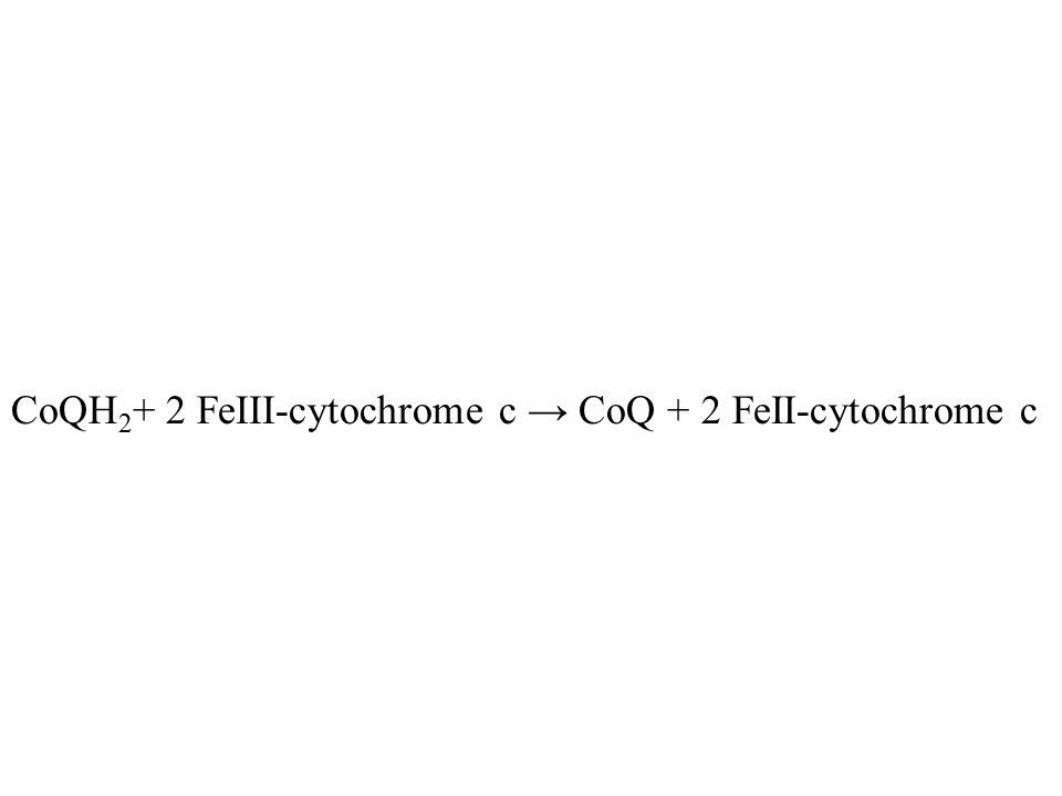 CoQH 2 + 2 FeIII-cytochrome c → CoQ + 2 FeII-cytochrome c