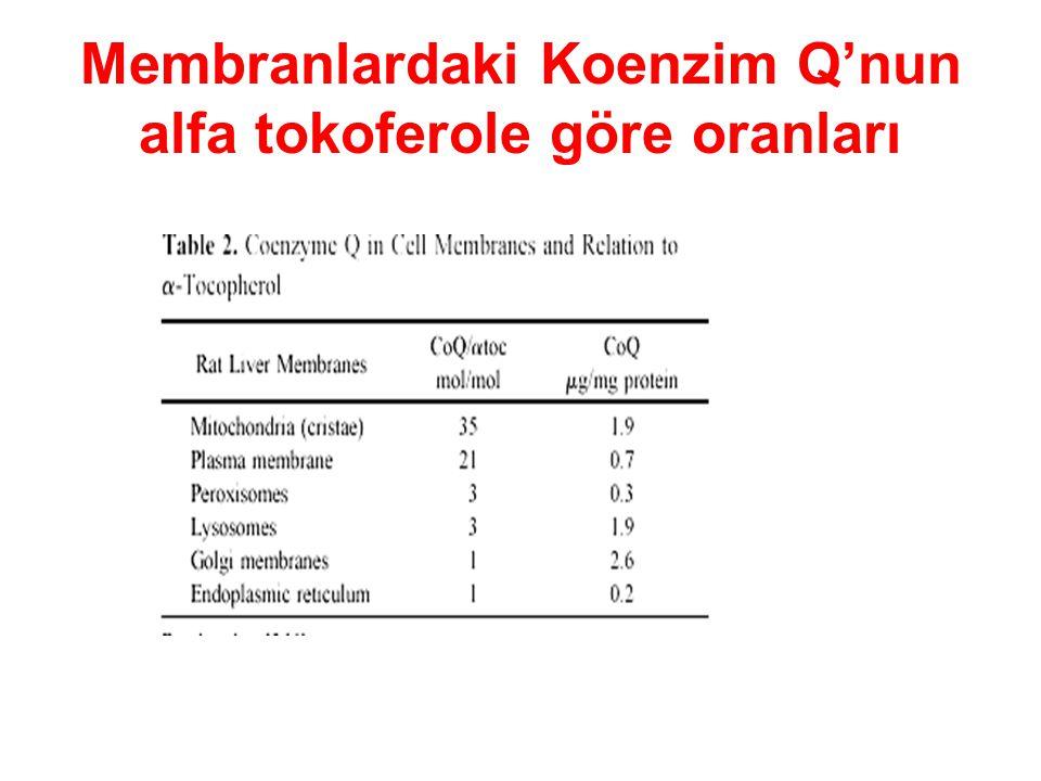 Membranlardaki Koenzim Q'nun alfa tokoferole göre oranları