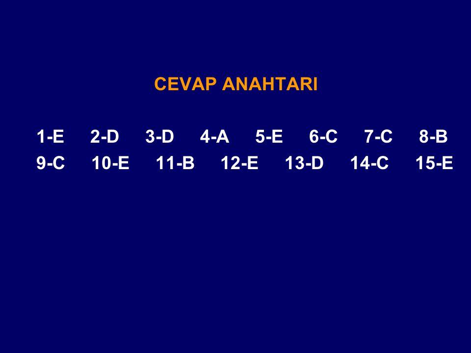 CEVAP ANAHTARI 1-E 2-D 3-D 4-A 5-E 6-C 7-C 8-B 9-C 10-E 11-B 12-E 13-D 14-C 15-E