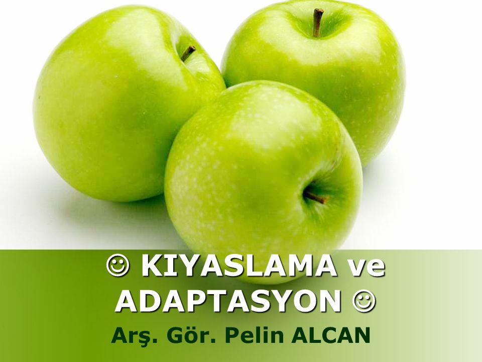 KIYASLAMA ve ADAPTASYON KIYASLAMA ve ADAPTASYON Arş. Gör. Pelin ALCAN