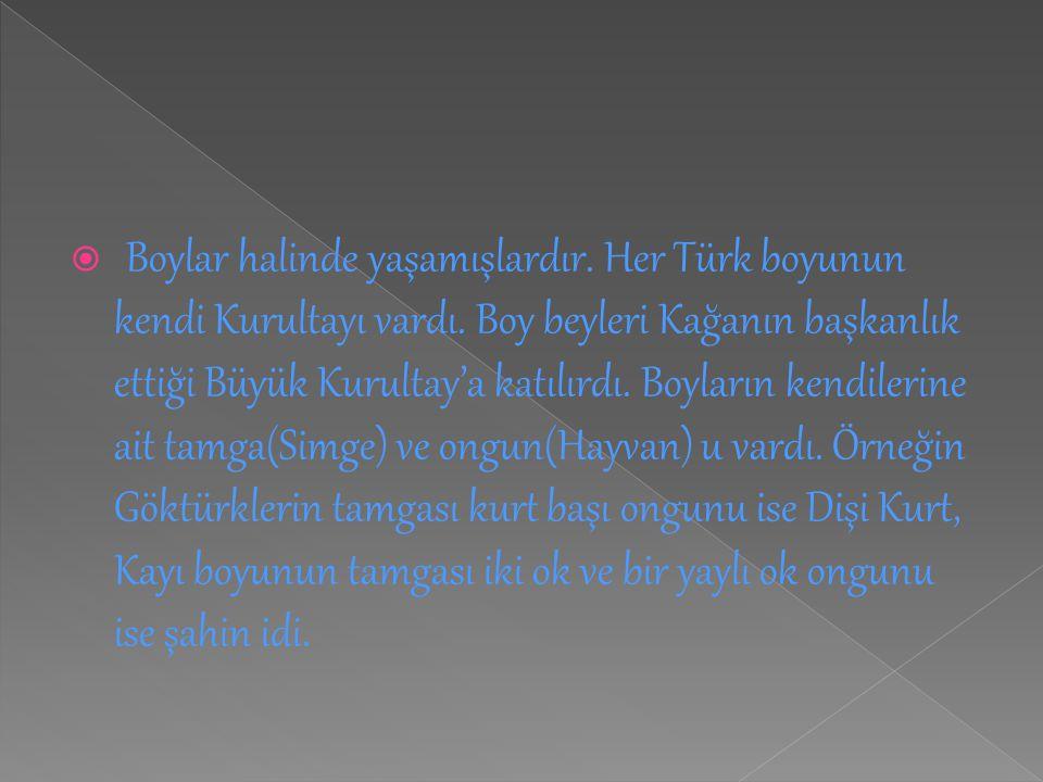  Boylar halinde yaşamışlardır. Her Türk boyunun kendi Kurultayı vardı. Boy beyleri Kağanın başkanlık ettiği Büyük Kurultay'a katılırdı. Boyların kend