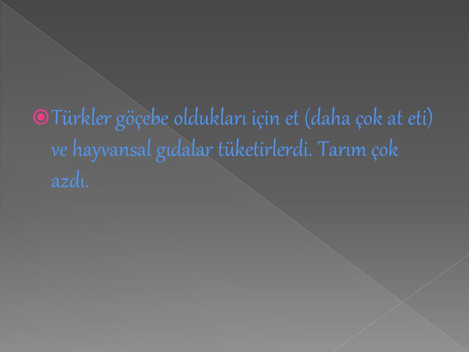  Türkler göçebe oldukları için et (daha çok at eti) ve hayvansal gıdalar tüketirlerdi. Tarım çok azdı.