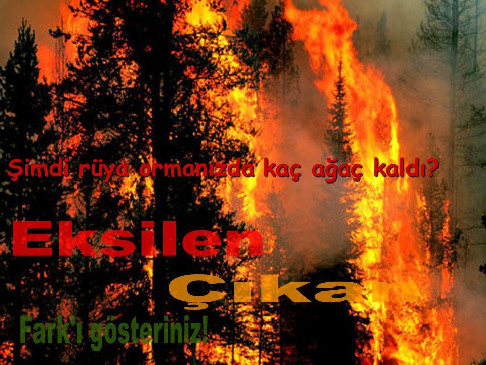 Rüyalar ormanında 39876 ağacımız vardı. Ancak geçen yıl bilinçsizce piknik ateşini söndürmeyen bir aile rüyalarımızı ateşe verdi ve tam 25412 ağacımız