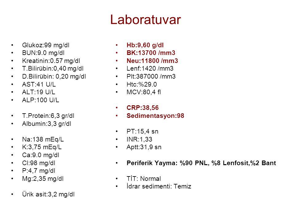 Laboratuvar Glukoz:99 mg/dl BUN:9.0 mg/dl Kreatinin:0.57 mg/dl T.Bilirübin:0,40 mg/dl D.Bilirübin: 0,20 mg/dl AST:41 U/L ALT:19 U/L ALP:100 U/L T.Prot