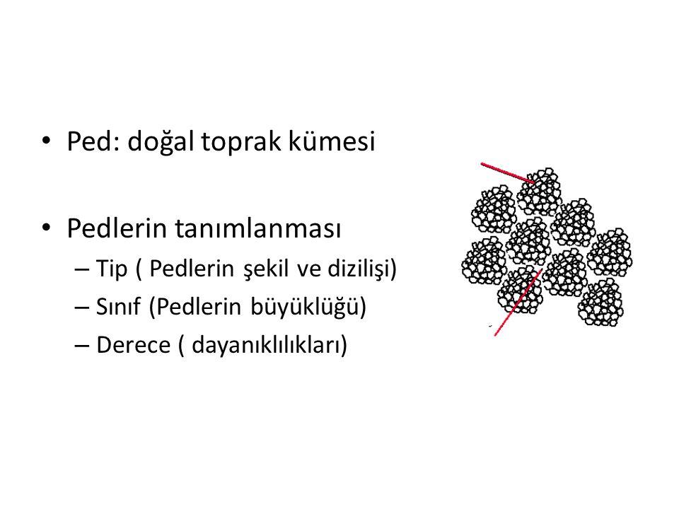 Ped: doğal toprak kümesi Pedlerin tanımlanması – Tip ( Pedlerin şekil ve dizilişi) – Sınıf (Pedlerin büyüklüğü) – Derece ( dayanıklılıkları)