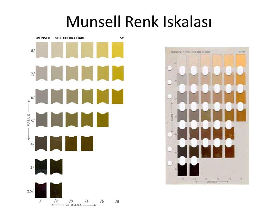 Munsell Renk Iskalası