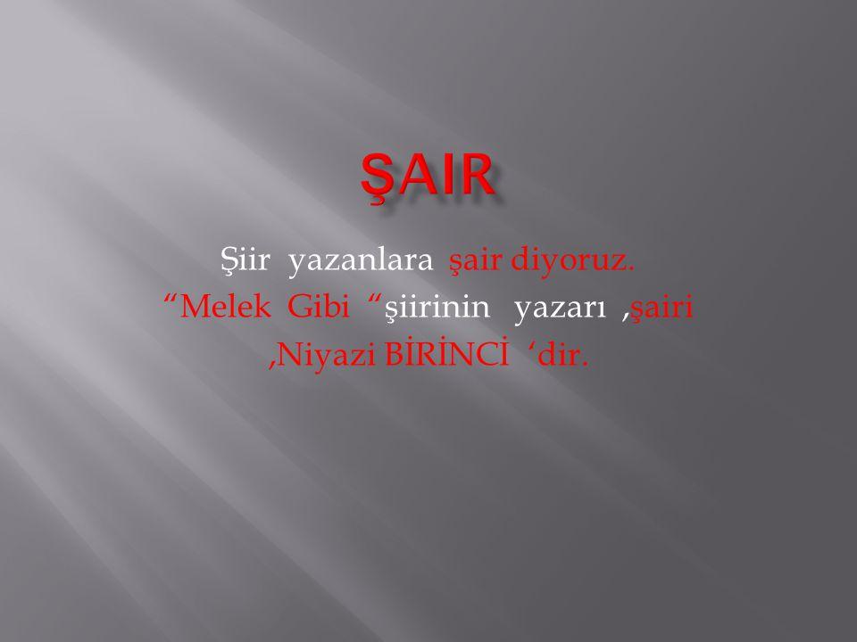 """Şiir yazanlara şair diyoruz. """"Melek Gibi """"şiirinin yazarı,şairi,Niyazi BİRİNCİ 'dir."""