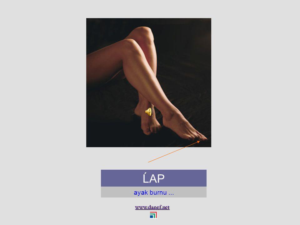 www.danef.net ĹAKO ayak...foot